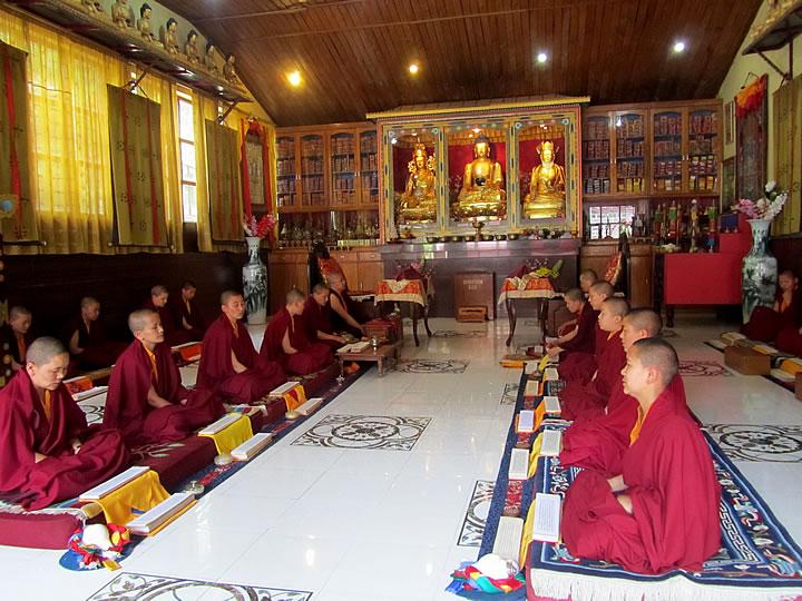 Nuns of Samten Tse in their shrine room during prayers